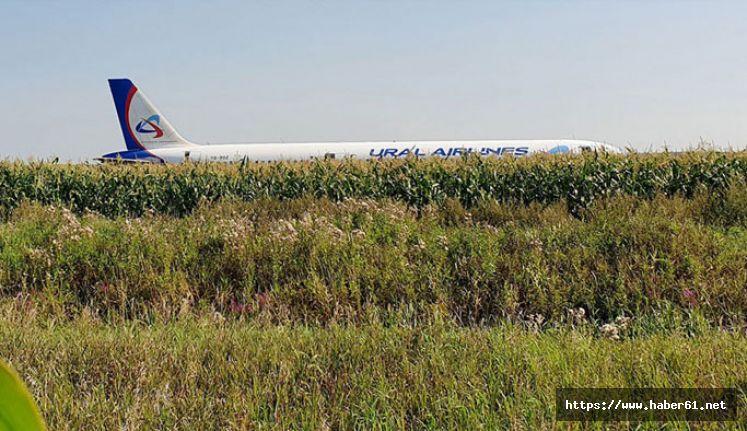 Yolcu uçağı tarlaya acil iniş yaptı