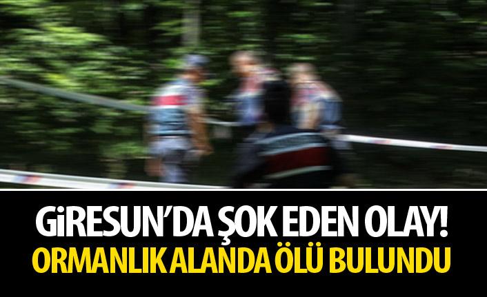 Giresun'da şok eden olay! Ormanlık alanda erkek cesedi!