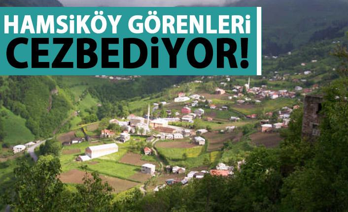 """Dağların eteğindeki """"Hamsiköy"""" cezbediyor"""