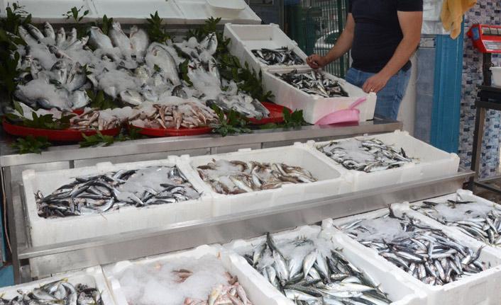 Balıkçılar umduklarını bulamadı