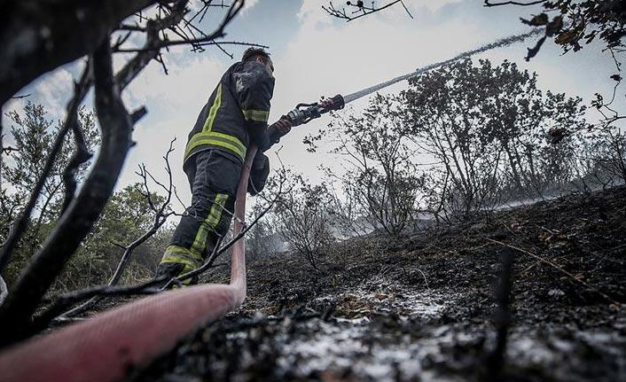 9 ildeki orman yangınları söndürüldü