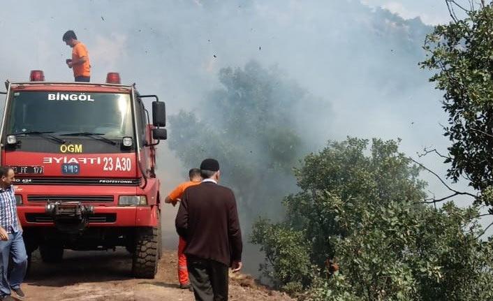 Bingöl'de çıkan orman yangını söndürüldü