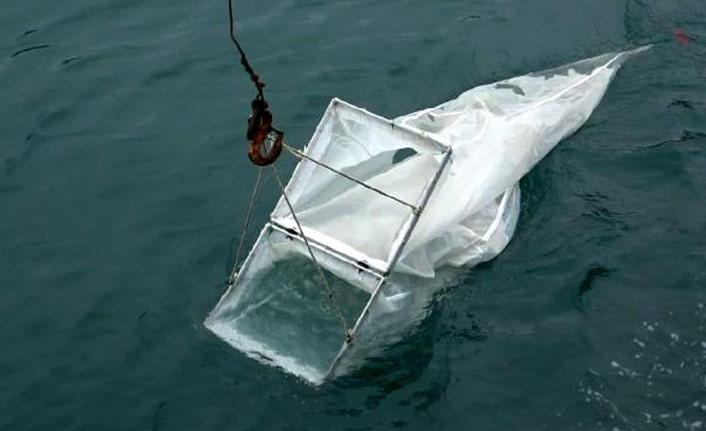 Karadeniz'de kirlilik nedeniyle ekosistem bozuluyor!