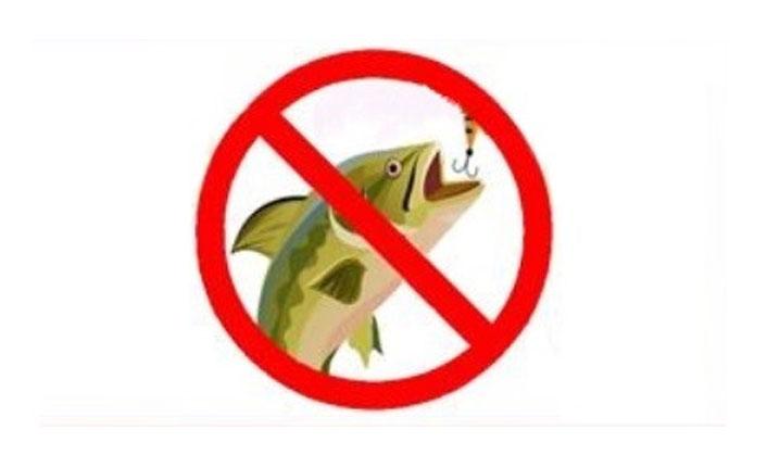 Doğal alabalık avı yasağı başlıyor