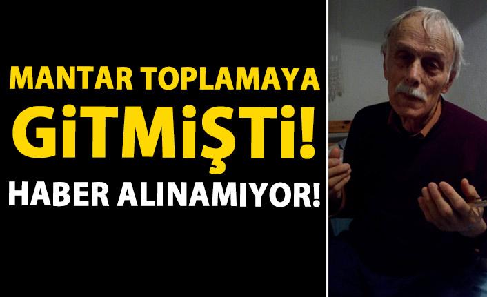 Trabzon'da mantar toplamaya giden adamdan haber alınamıyor!