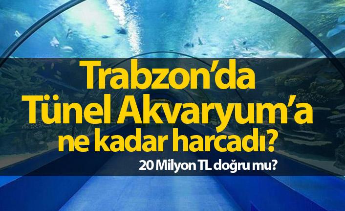 Tünel Akvaryum'a ne kadar harcandı?