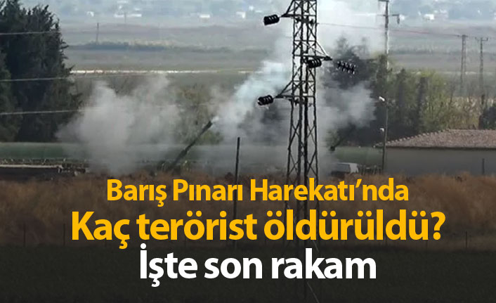 Barış Pınarı Harekatı'nda kaç terörist öldürüldü?