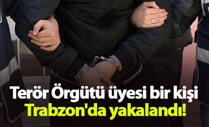 Terör Örgütü üyesi bir kişi Trabzon'da yakalandı!