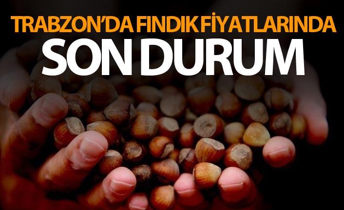 Trabzon'da fındık fiyatlarında son durum