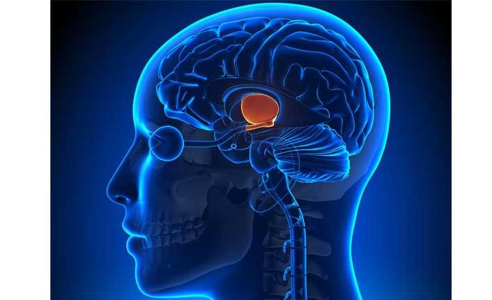 Sinsi hastalık hipofiz tümörüne karşı uzmanlar uyarıyor!