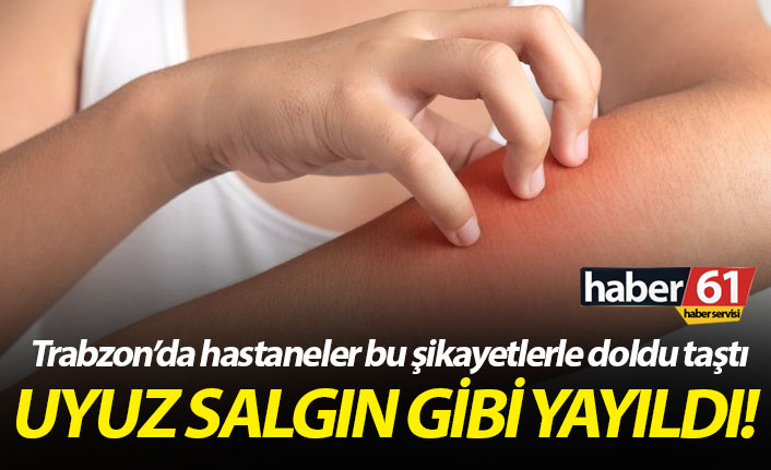 Trabzon'da uyuz hastalığı salgın gibi yayıldı! Uyuz nedir, nasıl tedavi edilir?