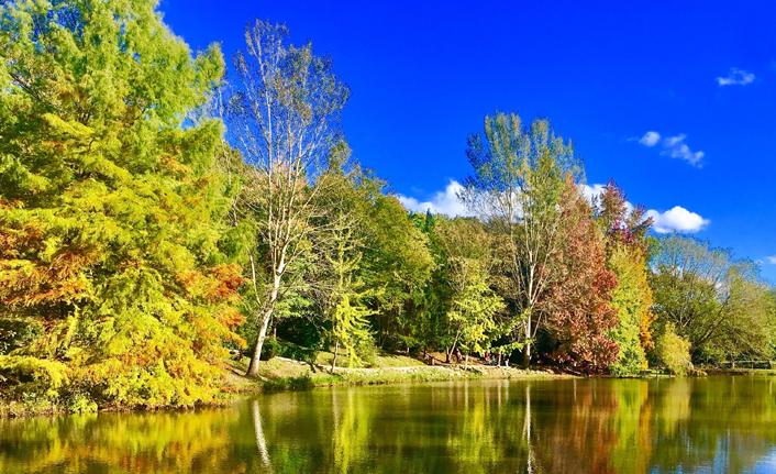 Bayburt'ta sonbahar mevsimi büyülüyor!