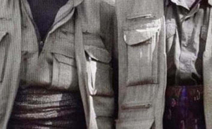 Ailesi ile görüşülen bir PKK'lı güvenlik güçlerine teslim oldu