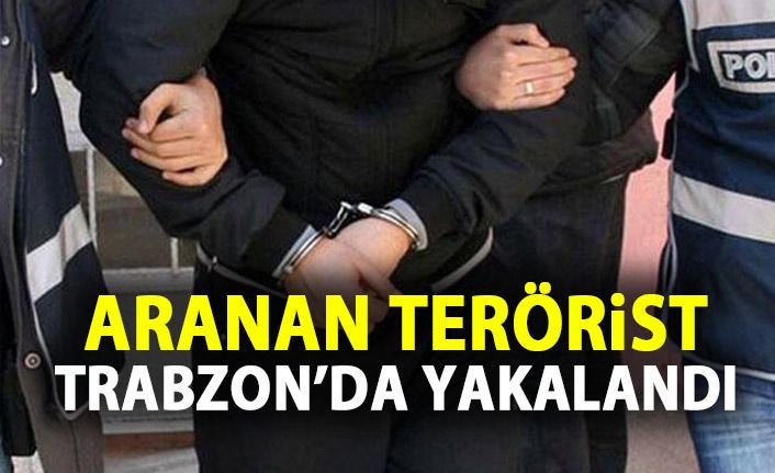 İstanbul merkezli operasyonda 1 Terörist Trabzon'da yakalandı