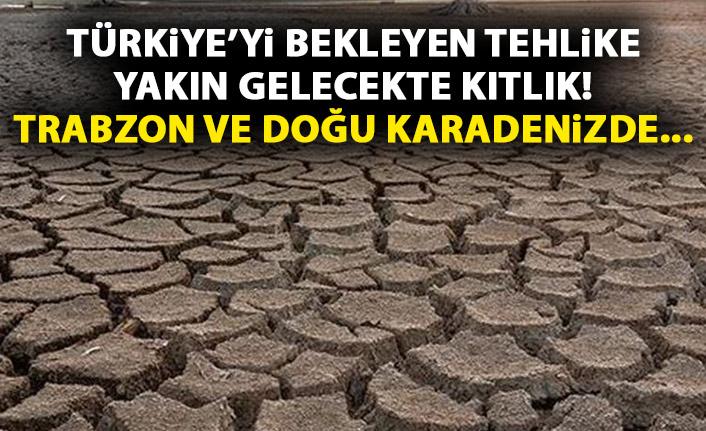 Türkiye'yi bekleyen tehlike! Kıtlık yakın!