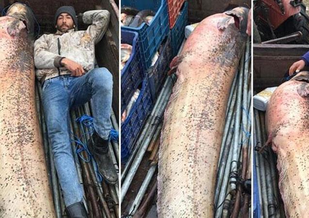 120 kiloluk yayın balığıyla poz verdiler!