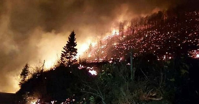 Trabzon'daki yangınlara sebep olanlar bedelini ödeyecek