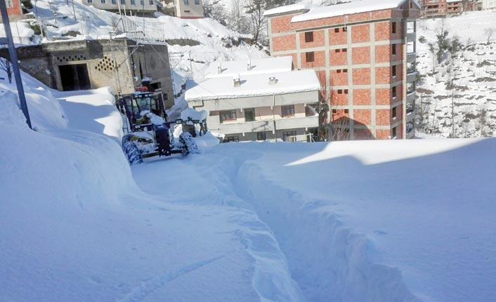 Trabzon'da mücadele sürüyor