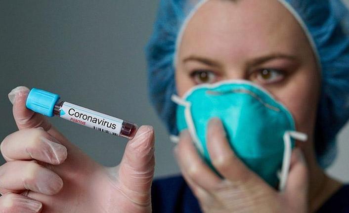 Korona virüs bir ülkeye daha sıçradı