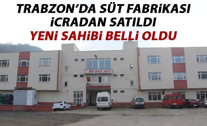 Trabzon'da süt fabrikası icradan satıldı!