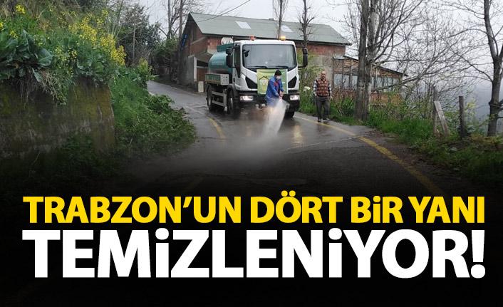 Trabzon'un dört bir yanı temizleniyor