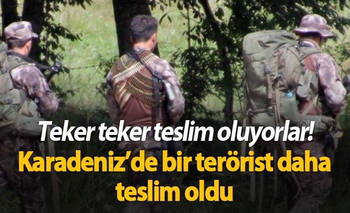 Karadeniz'de bir terörist daha teslim oldu!