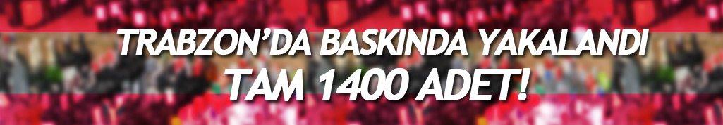 Trabzon Beşirli'de baskında 1400 adet ele geçirildi
