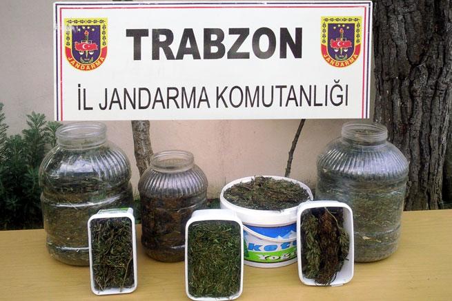 Trabzon'da esrar satıcısına şok baskın