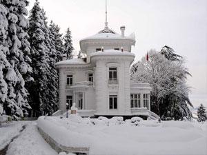 Trabzon'da kar yağışının diğer yüzü!
