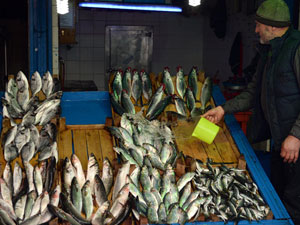 Soğuk hava Karadenizli balıkçıları vurdu