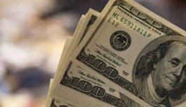 Vatandaş toplam ne kadar dolar bozdu?