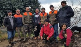 Giresun'da avcılar domuz mücadelesine başladı
