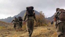 PKK'lı teröristlerin kaçırdığı vatandaşın...