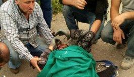 Trabzon'da TEDAŞ işçisi yere çakıldı!