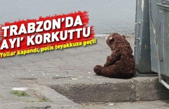 Trabzon'da oyuncak ayı paniği!