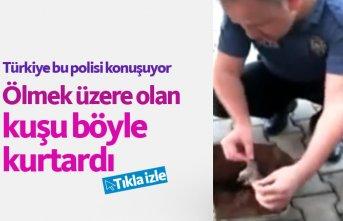 Polis, kuşu kalp masajıyla kurtardı