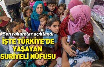 Son rakamlar açıklandı... İşte Türkiye'de...