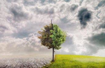 İklim değişlikliğiyle mücadelenin önemi büyük...