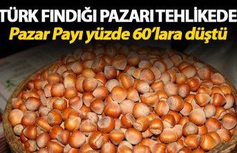Türk Fındığı pazarı tehlikede