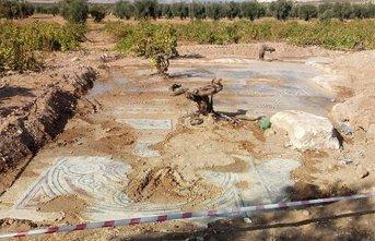 Tesadüfen bulunan mozaikler koruma altına alındı