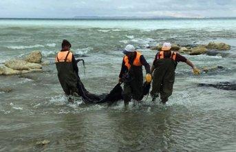Vatandaşın ihbarı üzerine Van Gölü kurtarıldı