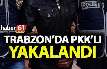 Trabzon'da PKK'lı yakalandı