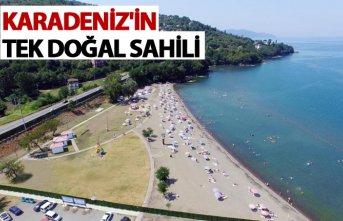Karadeniz'in tek doğal sahili