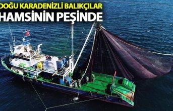 Doğu Karadenizli balıkçılar hamsiyi Batı Karadeniz'de...