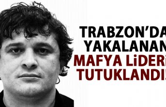 Trabzon'da yakalanan Gürcü mafya lideri tutuklandı