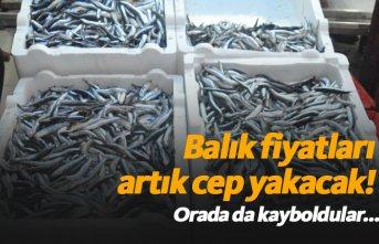 """""""Balık fiyatları artık cep yakacak"""""""