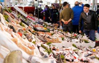 1 kilo tavuk fiyatına 2 kilo balık