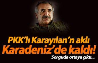 PKK'lı Karayılan'ın aklı Karadeniz'de kaldı!