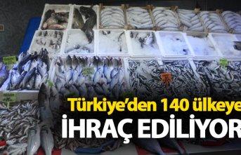 Türkiye'den 140 ülkeye ihraç ediliyor