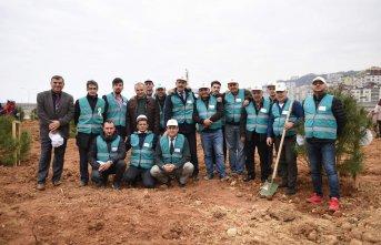 Trabzon'da'Denetimli' fidan dikimi